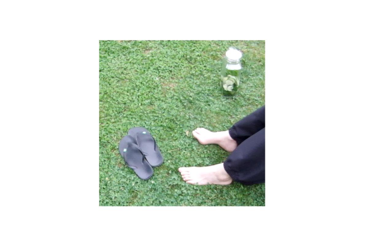 MicroCurta – Picnic
